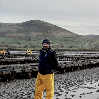 Irish oysters