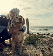 Here are our favourite dog-friendly hotels in Ireland for every budget