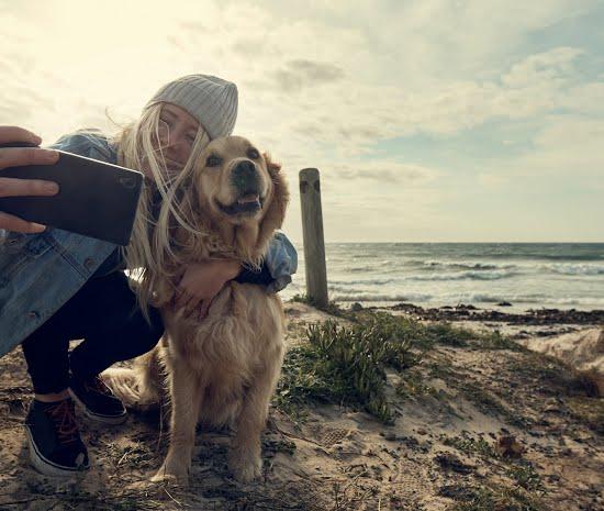 dog-friendly hotels in ireland