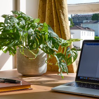 Would you take a pay cut to work from home permanently?