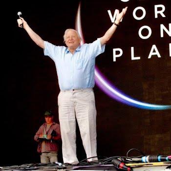 David Attenborough at Glastonbury