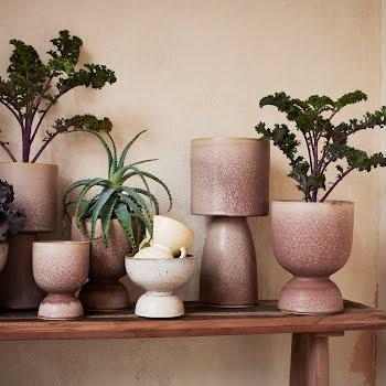 plant pots Ireland