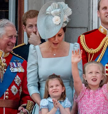 prince charles: poster boy of the Sandwich Generation