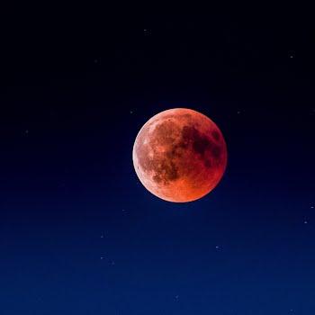 Super Flower Blood Moon Lunar Eclipse